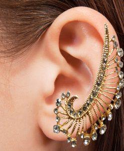 Kulak aksesuarı