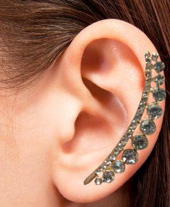 Hint kulak aksesuarı